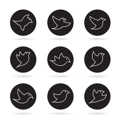 Vector group of bird in the circle on white background