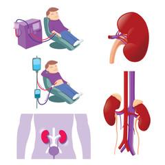 Kidney Medical