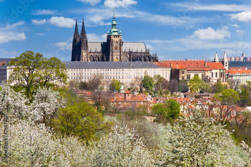 Staande foto Praag Prague castle and Lesser town, Prague (UNESCO), Czech republic