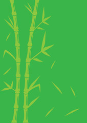 Green Bamboo Vector Background