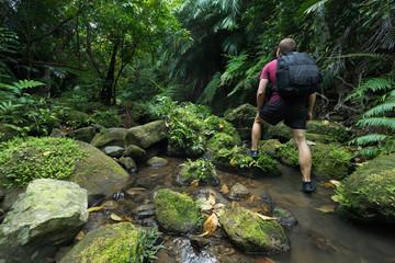 Man trekking through dense lush green tropical Jungle