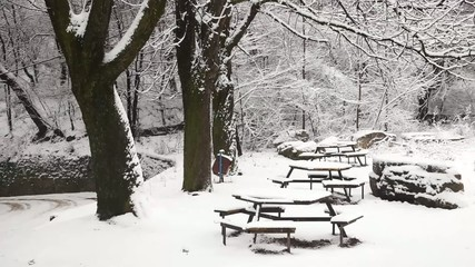 Park benches covered in snow
