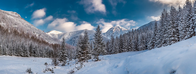 Big panorama of snowy valley in tatra mountains