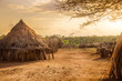 Hamer village near Turmi, Ethiopia - 76884329