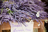 Fototapety Lavender bunches selling in an outdoor french market