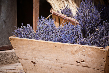 Lavender bunches selling in an outdoor french market