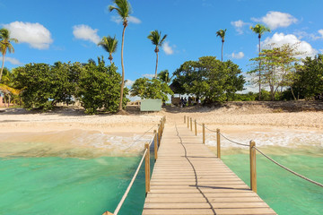 Vacation background: wooden jetty, exotic beach and palm trees