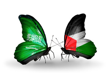 Two butterflies with flags Saudi Arabia and Palestine