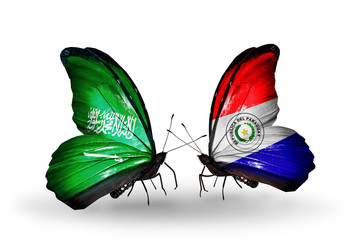 Two butterflies with flags Saudi Arabia and Paraguay