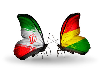Two butterflies with flags Iran and Bolivia