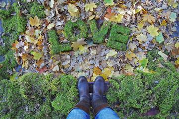 Love expression installation. Words LOVE on autumn background