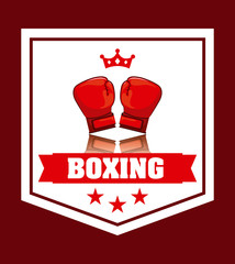 boxing sport