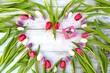 Tulpenherz mit Geschenk