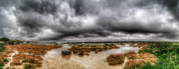 Storm in the marsh