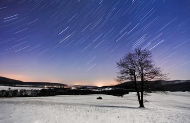 Tree at night - winter with stars