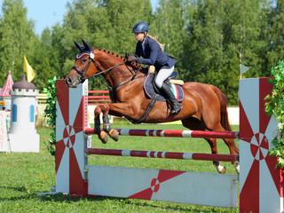 Horseback rider jumps over hurdle