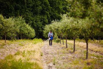 Old farmer spreading fertilizer in orchard