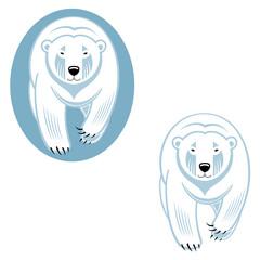 Polar bear - wild animal from North Pole