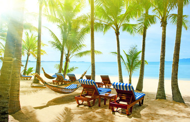 Empty hammock in the tropical beach