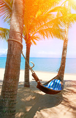 Empty hammock between palms trees at sandy beach