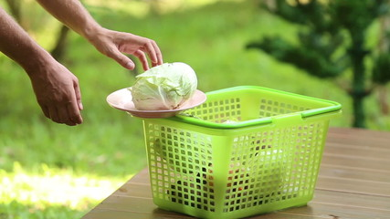 man chooses from a basket plate of cabbage for cooking borsch