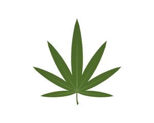 Marijuana Hemp Cannabis Medicine