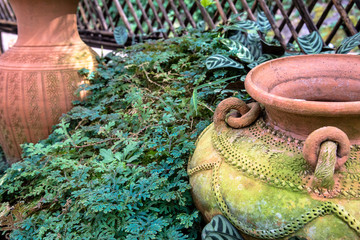 Mini garden decoration by pottery jar