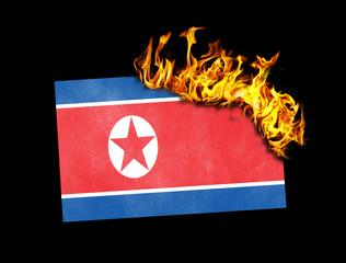 Flag burning - North Korea