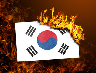 Flag burning - South Korea