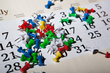 needles on the calendar bunch