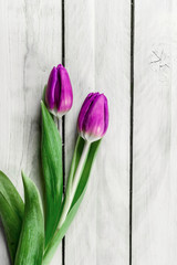 Tulip flowers on wood