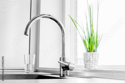 Leinwanddruck Bild Faucet with a green plant