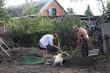 Family planting seedlings in spring