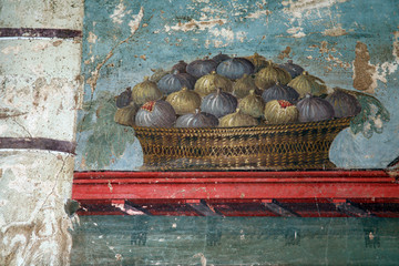 Oplontis fresco