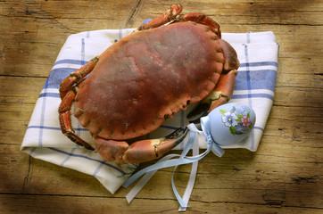 Brachyura カニ Κάβουρας Kraby Granchio Крабы Crab سرطان