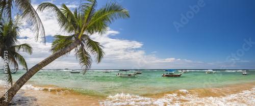 palm beach - 76930573