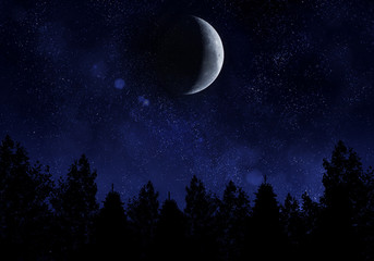 Starry night with moon and forest