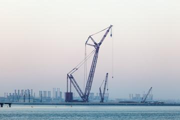 Crane at the Persian Gulf coast in Dubai, United Arab Emirates