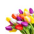 Strauß bunter Blumen