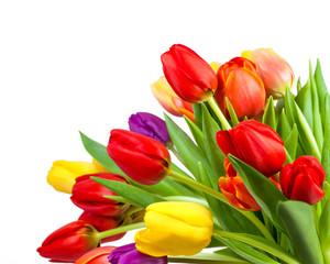 Bunter Frühlingsstrauß mit Tulpen