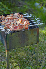 Meat roasted on skewers