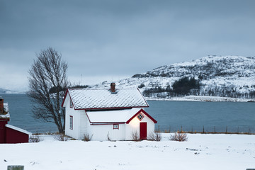 Norway in winter - trip to the island Kvaloya (Tromso)