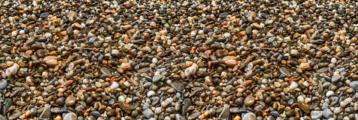 Sea sand texture made of shell and stone pieces. Seamless textur