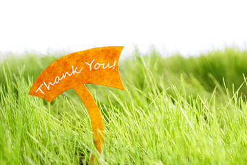 Label With Thank You On Green Grass