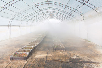 greenhouse farming irrigation