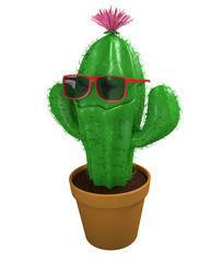 Cool cactus man houseplant with trendy sunglasses