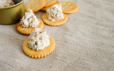 Cracker with tuna spread