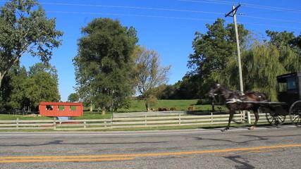 Amish Indiana 1
