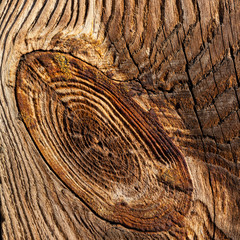 wooden pattern of knotted old board