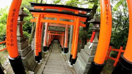 POV Torii gates Fushimi Inari Taisha shrine Buddhist Kyoto Japan Asia